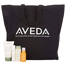 Buy AVEDA Travel Essentials Kit Online at johnlewis.com