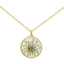 Buy Catherine Weitzman 18ct Gold Plated Small Round Queen Anne's Lace Flower Pendant Necklace, Gold/White Online at johnlewis.com