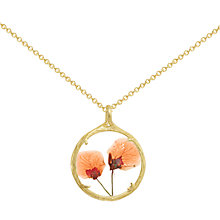 Buy Catherine Weitzman 18ct Gold Plated Small Verbena Flower Pendant Necklace, Gold/Orange Online at johnlewis.com