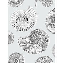 Buy Voyage Fossilium 3m Wallpaper Online at johnlewis.com