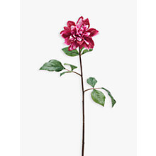 Buy Peony Artificial Dahlia, Set of 6 Online at johnlewis.com