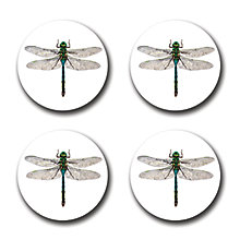 Buy Gadd & Co Dragonfly Coasters, Glass, Set of 4 Online at johnlewis.com