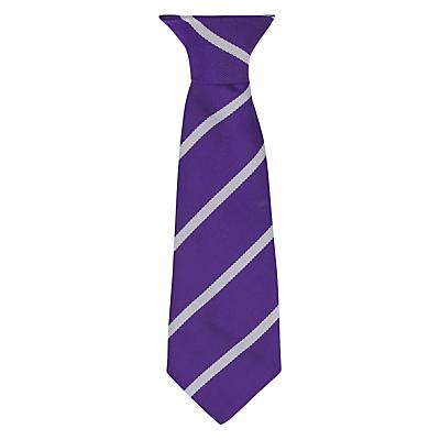 Image of Daiglen School Clip-On Tie, 10, Silver/Purple