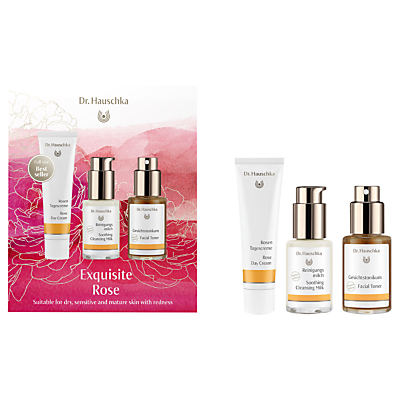 dr hauschka exquisite rose skincare gift set reviews. Black Bedroom Furniture Sets. Home Design Ideas
