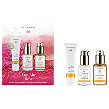 Buy Dr Hauschka Exquisite Rose Skincare Gift Set Online at johnlewis.com