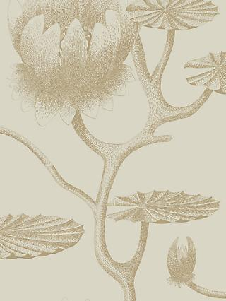 Cole & Son Lily Wallpaper