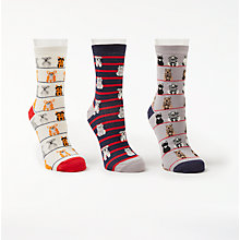 Buy John Lewis Sitting Dogs Ankle Socks, Pack of 3, Multi Online at johnlewis.com