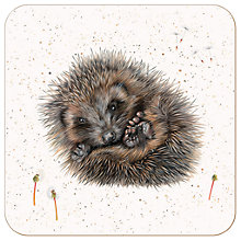 Buy Harebell Designs Hedgehog Placemat, Multi Online at johnlewis.com