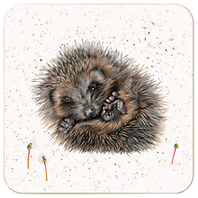 Buy Harebell Designs Hedgehog Coasters, Set of 4, Multi Online at johnlewis.com