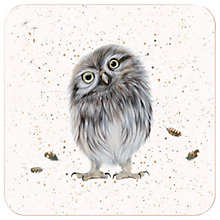 Buy Harebell Designs Little Owl Coasters, Set of 4, Multi Online at johnlewis.com
