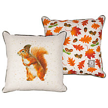 Buy Harebell Designs Squirrel Cushion, Multi Online at johnlewis.com