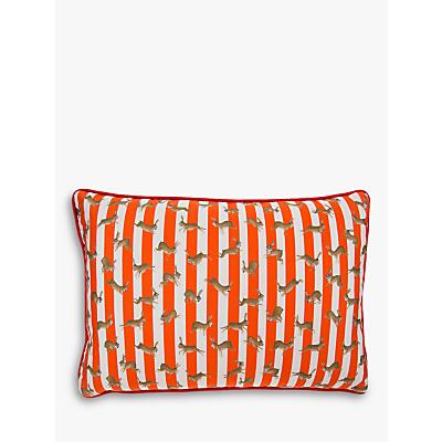 Mister Berwyn Racing Rabbit Stripe Cushion, Multi