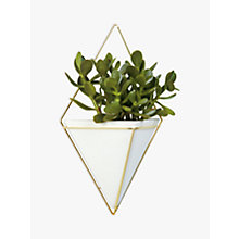 Buy Umbra Trigg Large Wall Planter, White Online at johnlewis.com