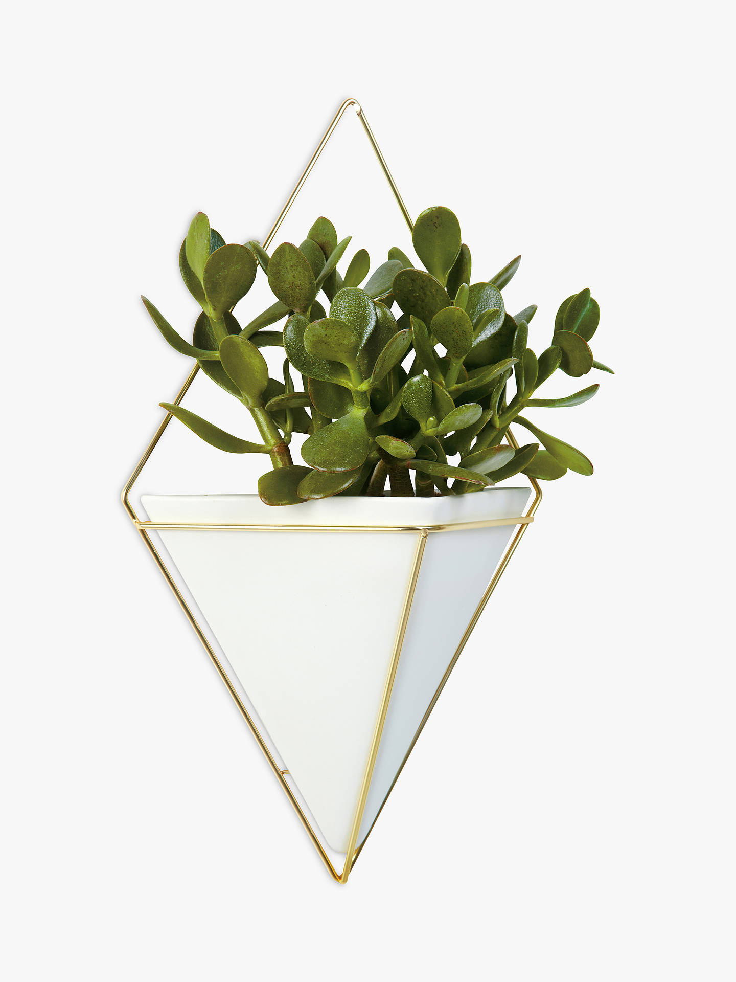 Umbra Trigg Large Wall Planter White At John Lewis Partners