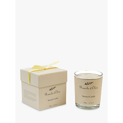 Branche d'Olive Verveine Scented Candle