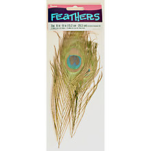 Buy Habico Peacock Feathers, Pack of 2 Online at johnlewis.com