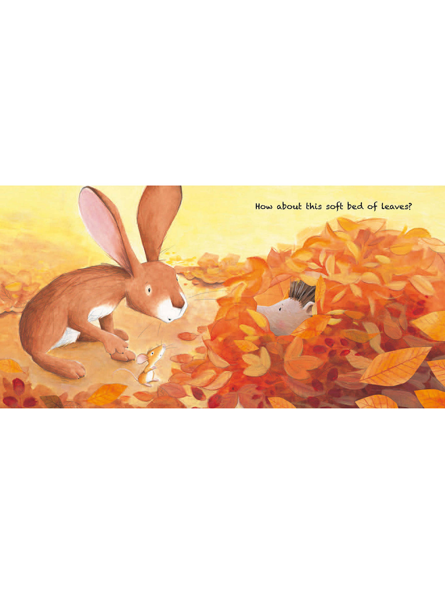 Buy A Home for Hare and Mouse Children's Board Book Online at johnlewis.com