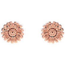 Buy Olivia Burton 3D Daisy Stud Earrings, Rose Gold Online at johnlewis.com