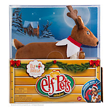 Buy The Elf on the Shelf Elf Pets Reindeer Book with Soft Toy Online at johnlewis.com