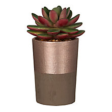 Buy John Lewis Artificial Single Succulent, Green/Pink Online at johnlewis.com