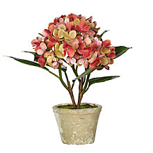 Buy John Lewis Artificial Hydrangea Pot, Green/Pink Online at johnlewis.com