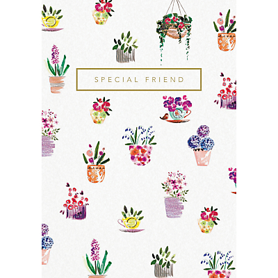 Woodmansterne Potted Delight Special Friend Greeting Card
