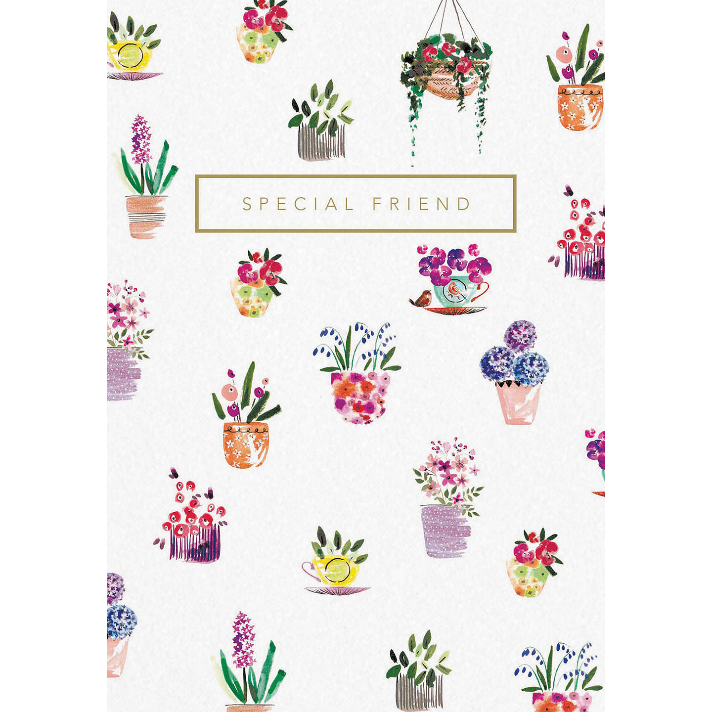 Woodmansterne Potted Delight Special Friend Greeting Card At John Lewis