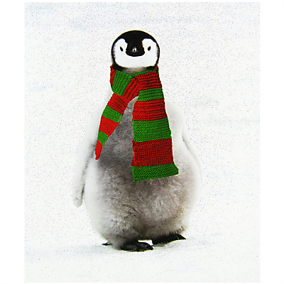Portfolio Eric Penguin Christmas Card