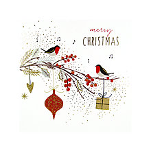Buy Portfolio Robins On Branch Christmas Card Online at johnlewis.com
