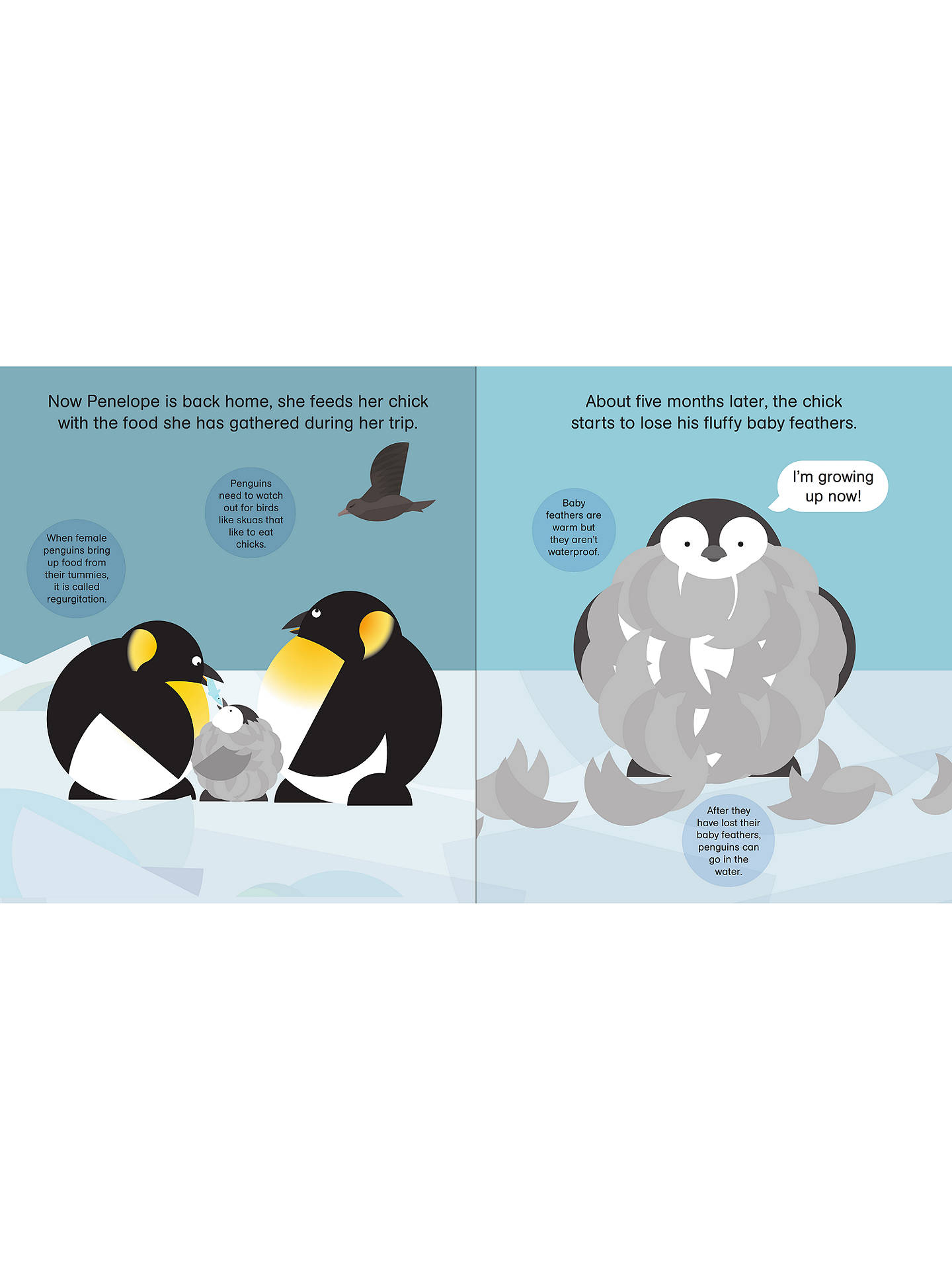 BuyRounds: Parker Penguin Children's Book Online at johnlewis.com