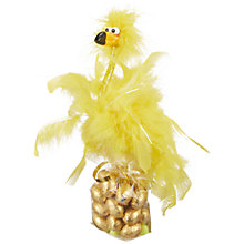 Buy Candyhouse Dame Bird Pen and Foiled Mini Eggs, Assorted, 126g Online at johnlewis.com