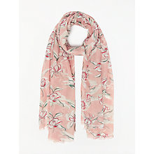 Buy John Lewis Vintage Floral Print Scarf, Blush/Multi Online at johnlewis.com