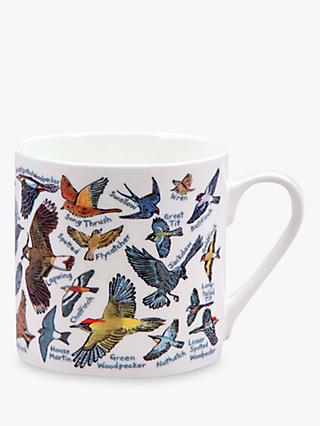 McLaggan Smith Educational Birds Mug, 500ml