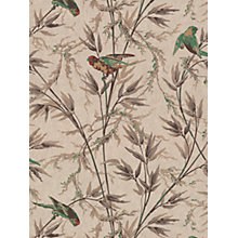 Buy Little Greene Paint Co. Great Ormond St. Wallpaper Online at johnlewis.com