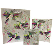 Buy Paper Salad Hummingbird Gift Bag Online at johnlewis.com