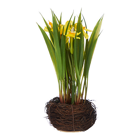 Easter toys gifts easter gifts john lewis buy john lewis artificial daffodils yellow online at johnlewis negle Choice Image