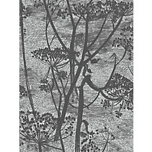 Buy Cole & Son Cow Parsley Wallpaper Online at johnlewis.com