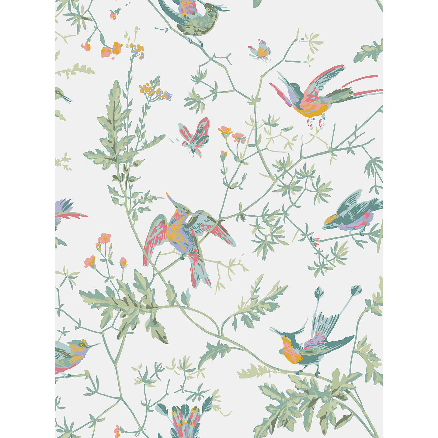BuyCole Son Hummingbirds Wallpaper 112 4016 Online At Johnlewis