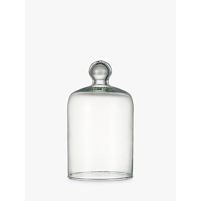 John Lewis Glass Bell Cloche Jar, Small
