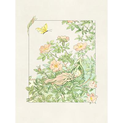 Boråstapeter Prinsessan Nyponblom Wallpaper Panel, 6270
