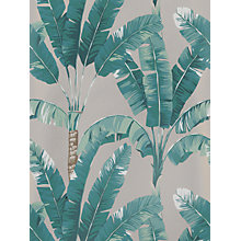 Buy Osborne & Little Palmaria Wallpaper Online at johnlewis.com