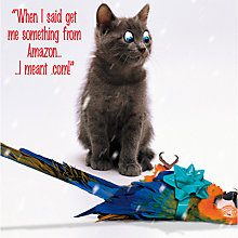 Buy Emotional Rescue Cat With Parrot Christmas Card Online at johnlewis.com