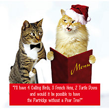 Buy Emotional Rescue 2 Cats Christmas Card Online at johnlewis.com