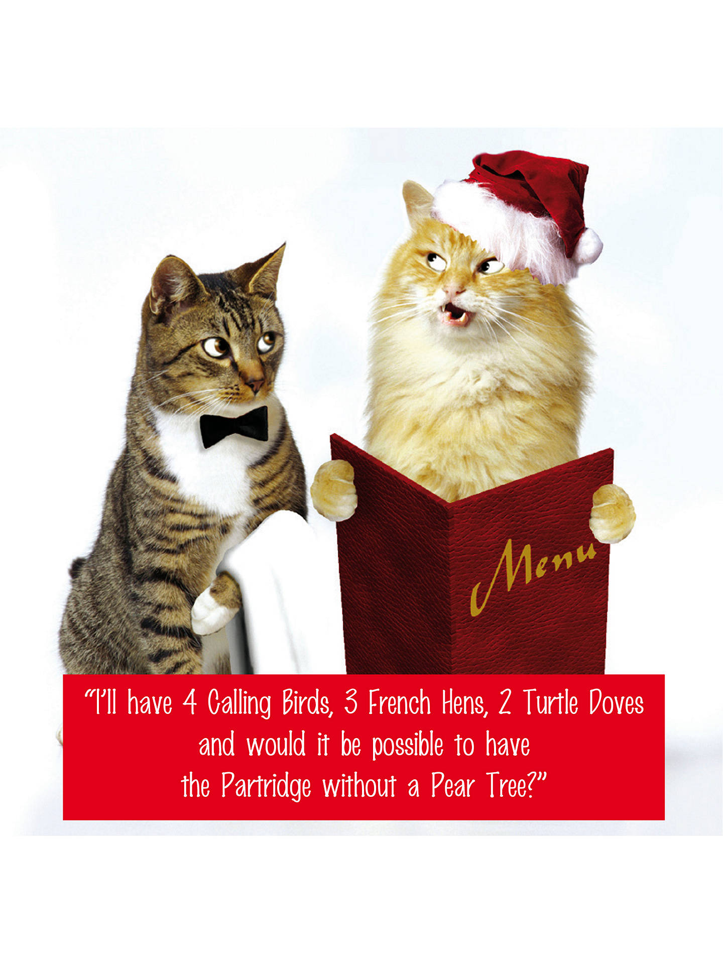 Emotional Rescue 2 Cats Christmas Card at John Lewis & Partners