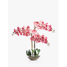 Buy Peony Artificial Orchid in Fishbowl with Gravel, Large Online at johnlewis.com