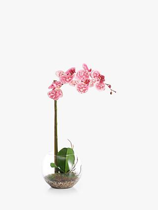 51efecec0226 Peony Artificial Small Orchid Fishbowl with Gravel