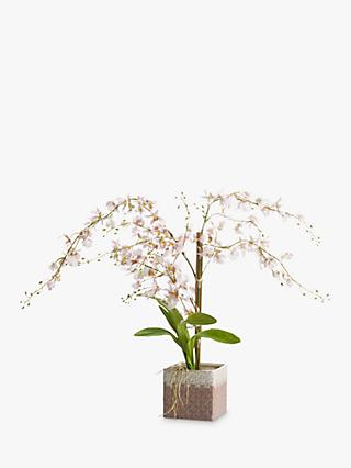 Peony Artificial Oncidium Orchid, Pale Pink