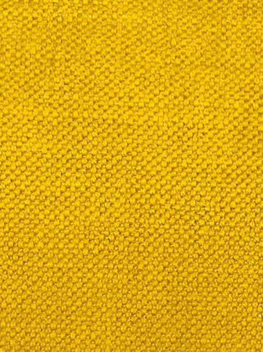 Clever Velvet Bumblebee
