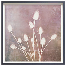 Buy Doug Chinnery - Harvest Passion Framed Print, 42 x 42cm Online at johnlewis.com