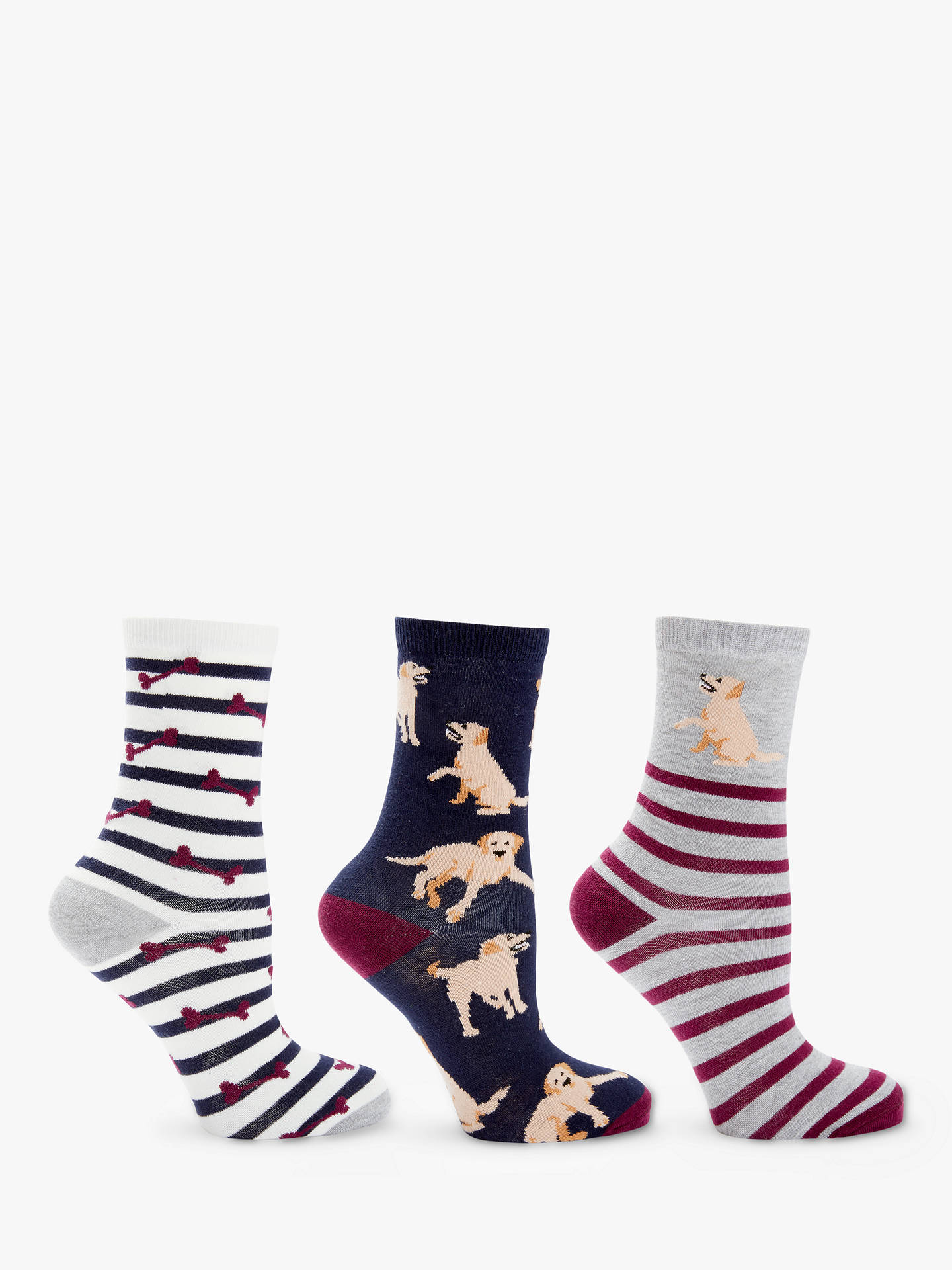 BuyJohn Lewis & Partners Dog and Bone Ankle Socks, Pack of 3, Multi Online at johnlewis.com